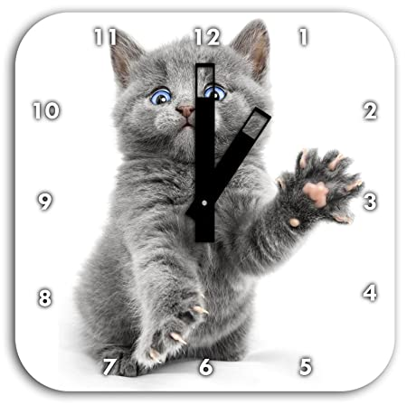 Gato del bebé accattonaggio, reloj de pared con le mani cuadrados ...