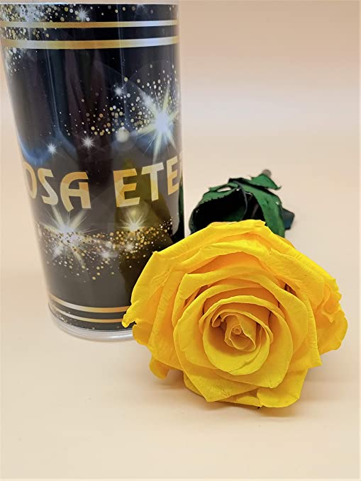 Rosa eterna Amarilla Extra. Gratis TU ENVÍO. Tubo de conservación. Rosa preservada Amarilla. Hecho en España.: Amazon.es: Hogar