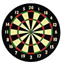 TG Champion Tournament Bristle Dartboard