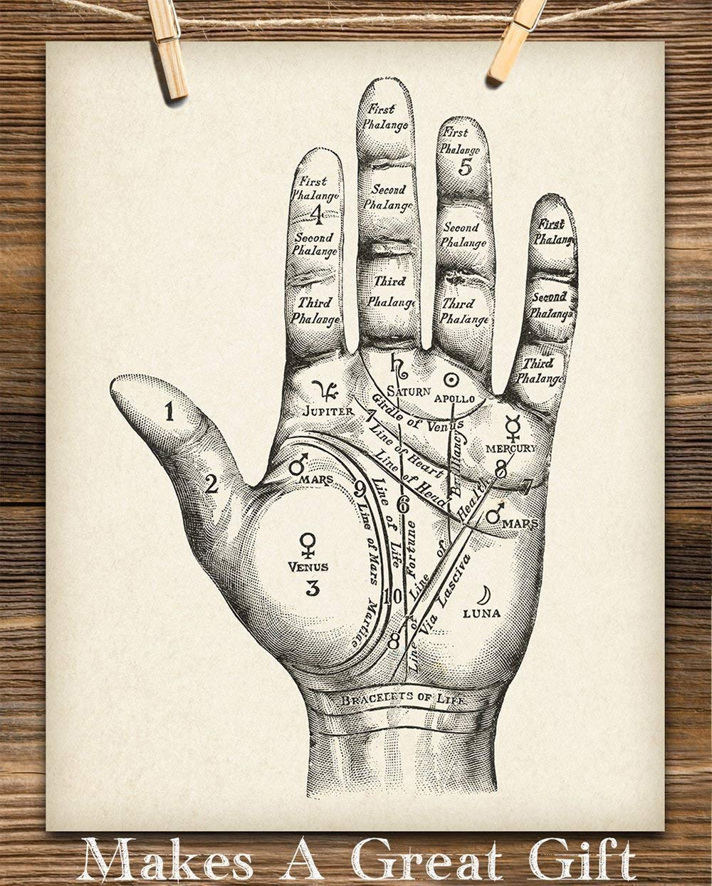 Amazon Com Vintage Palm Reading Chart 11x14 Unframed Art Print Great Decor And Gift For Fans Of Palmistry And Astrology Under 15 Handmade