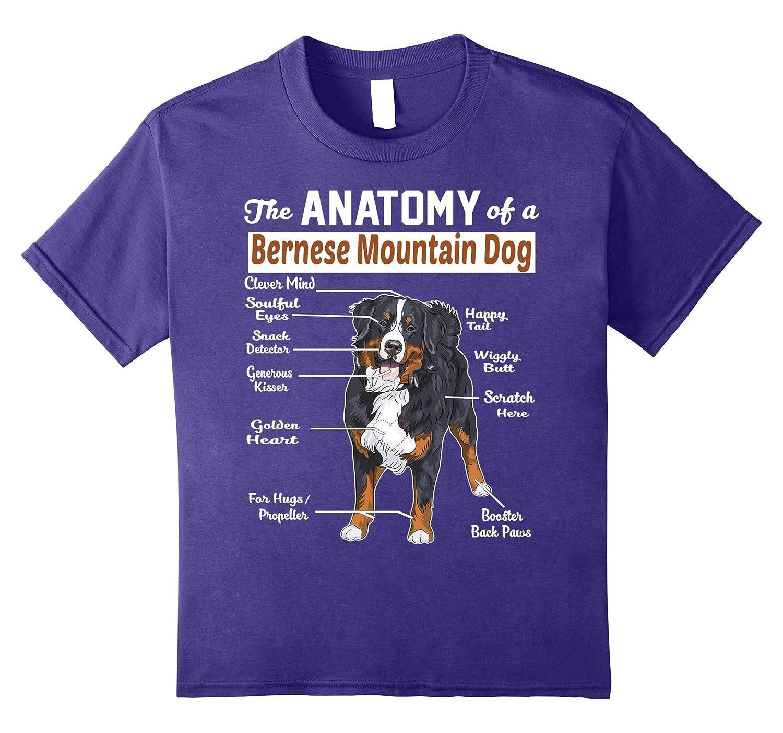 Amazon.com: The anatomy of a Bernese Mountain Dog shirt: Clothing