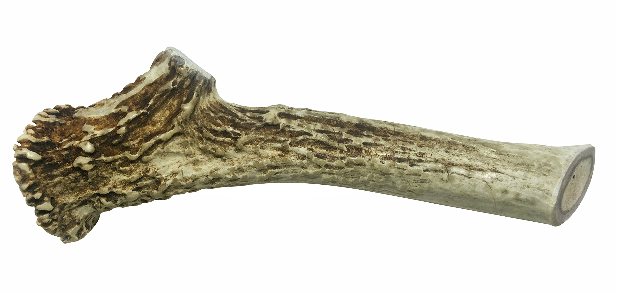 WhiteTail Naturals X-LARGE 7-8 Inch Deer Antler for Dogs, All Natural Antler Chew