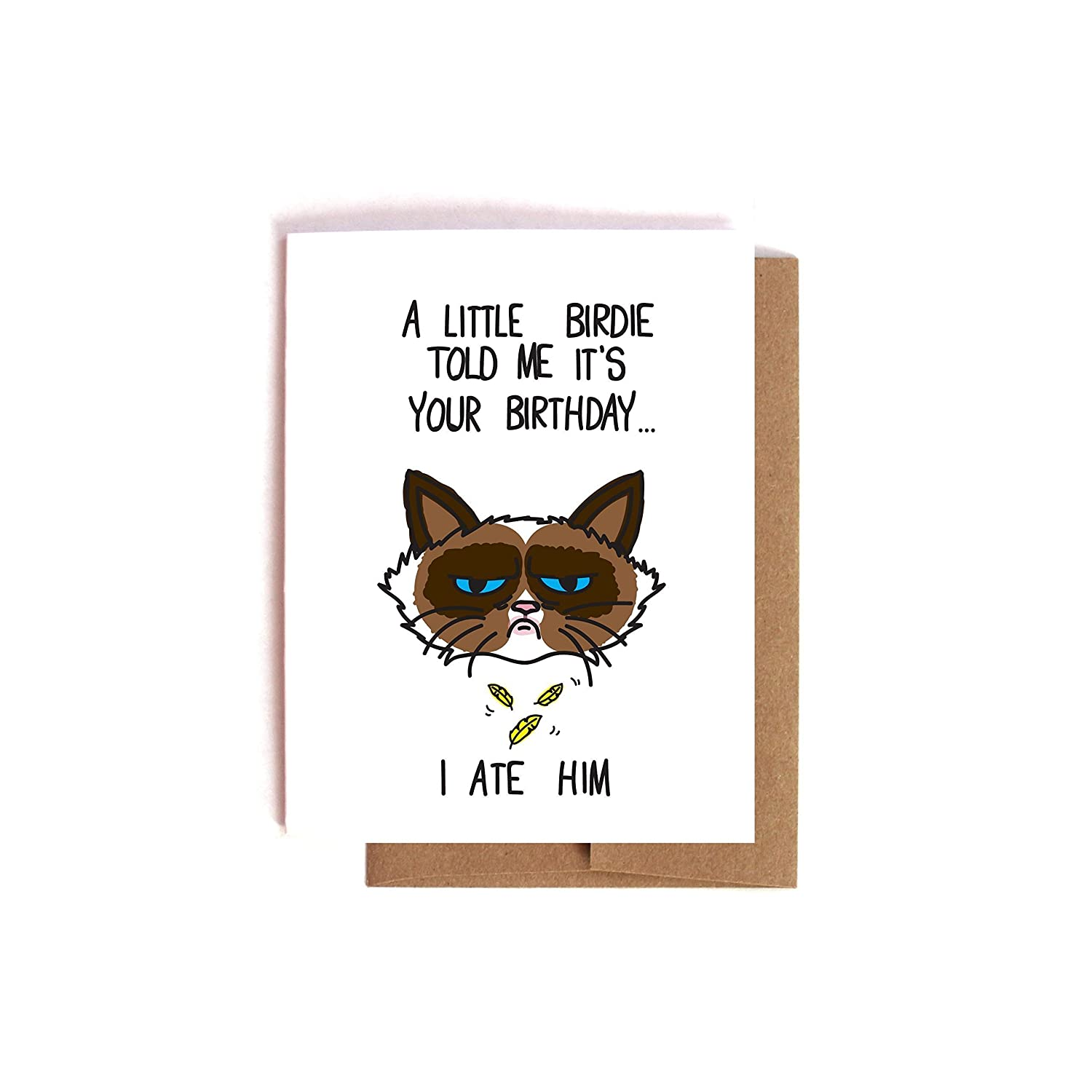 Amazon Funny Sarcastic Grumpy Cat Birthday Card Handmade