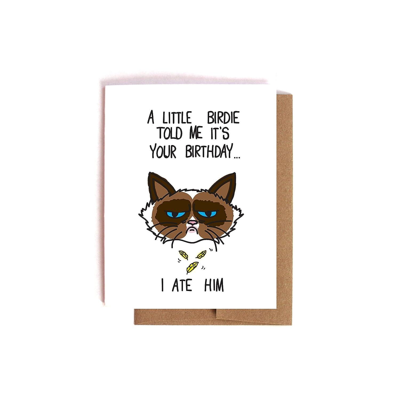 Funny Sarcastic Grumpy Cat Birthday Card