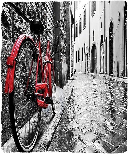 VROSELV Custom Manta para Bicicleta Classic Bicicleta en la Calle ...