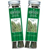 Scentsicles, White Winter Fir Scented Ornament Sticks (2 Bottles, 12 Total Ornament Sticks)