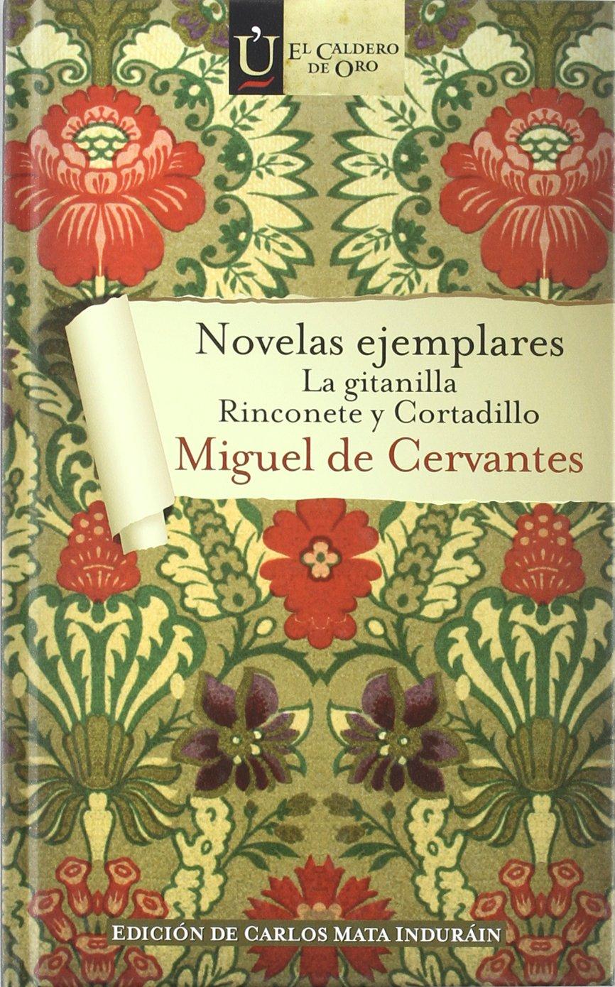 Novelas ejemplares (La gitanilla, Rinconete y cortadillo) (El caldero de oro)