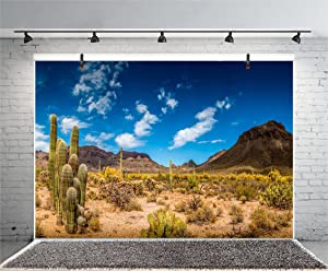 Leyiyi 8x6ft Photography Background Mexico Cactus Backdrop Western Life Desert Plant Saguaro Dry Sand Grunge Bush Mountain Poor Rural Cowboy American Travel Photo Portrait Vinyl Studio Video Prop