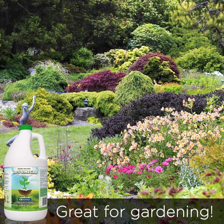 20% Vinegar | Industrial Strength Natural Vinegar | Multi Purpose - 5 Gallon Pail by Green Gobbler (Image #7)