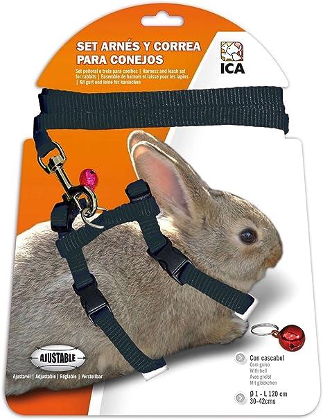 ICA DA1028 Set de Arnés y Correa para Conejos, Negro: Amazon.es ...