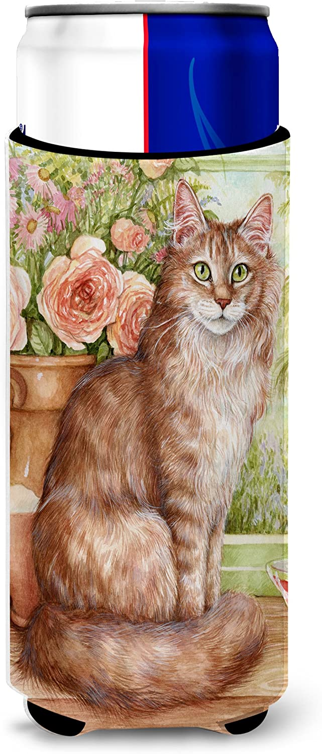 Caroline's Treasures CDCO0236MUK Maine Coon Cat by Debbie Cook Ultra Beverage Insulators for slim cans, Slim Can, multicolor