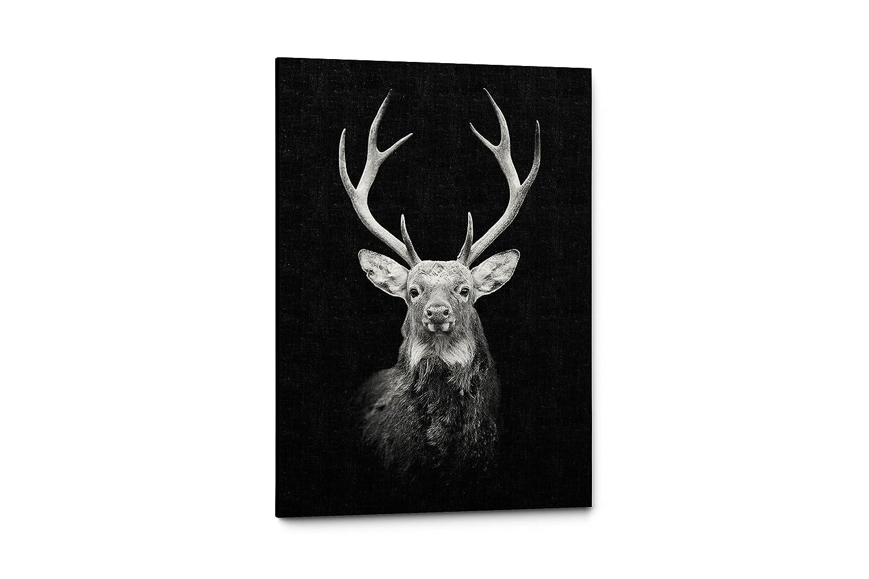 ブラックとホワイト動物写真キャンバス壁アートPrints 11