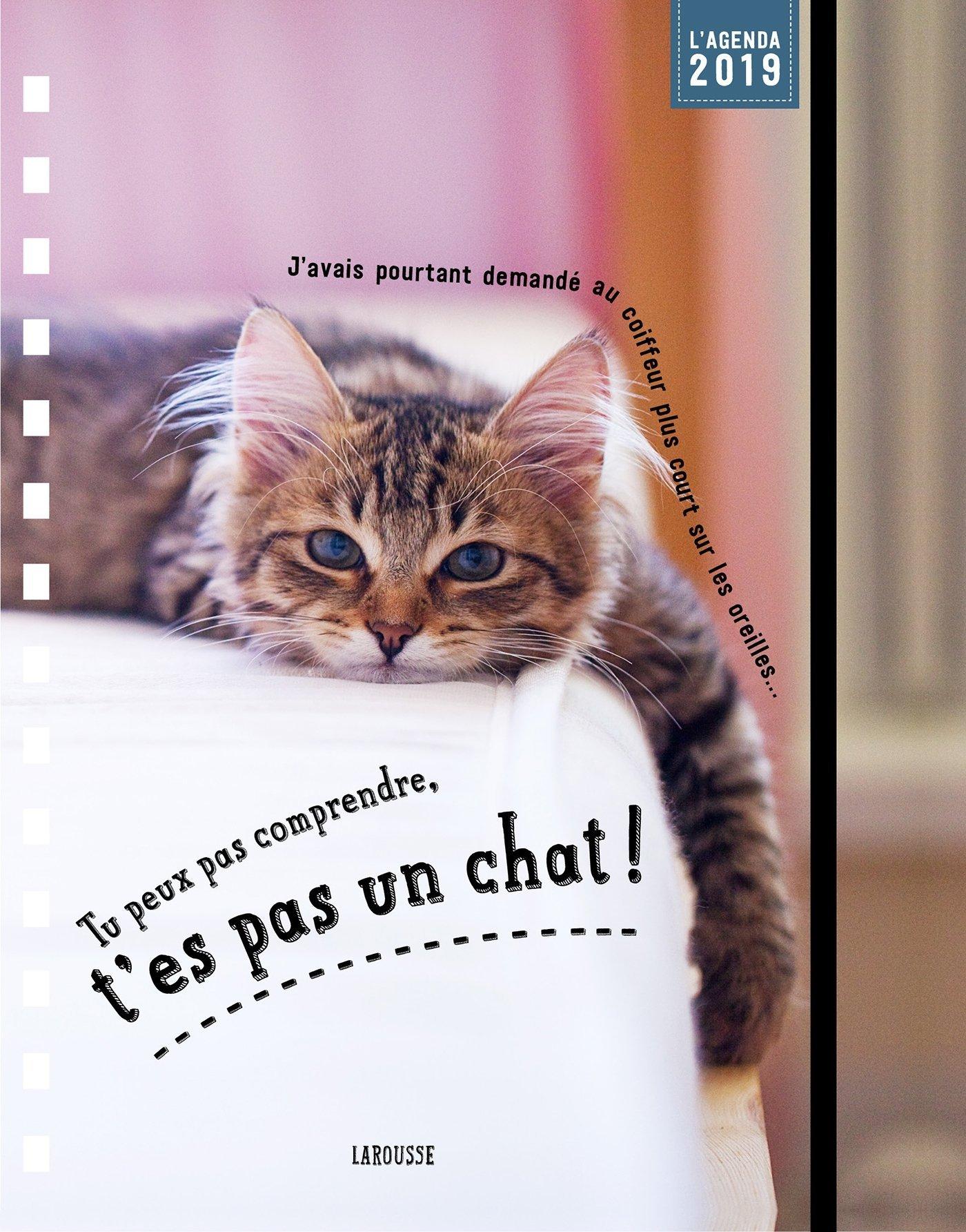 Tu peux pas comprendre t'es pas un chat - agenda Collectif Isabelle Jeuge-Maynart Ghislaine Stora Larousse