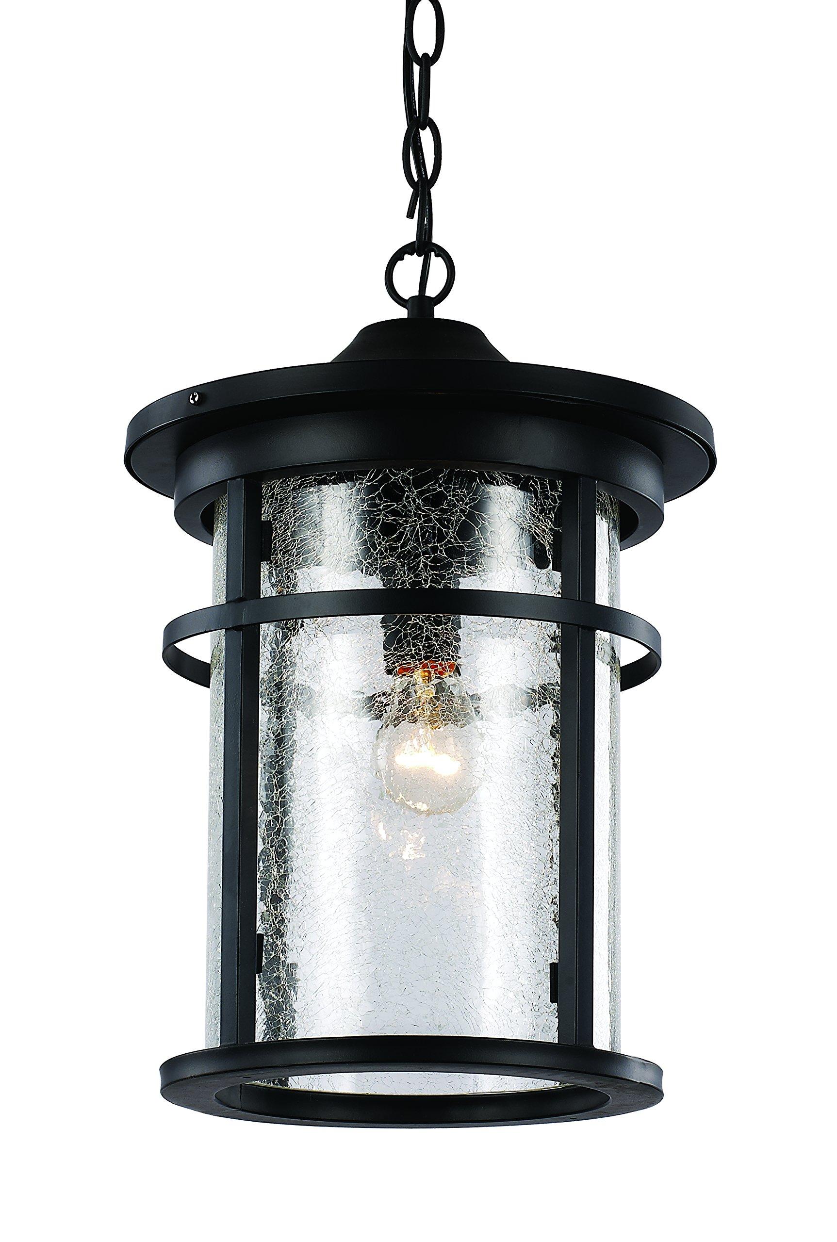 Trans Globe Lighting 40385 BK Outdoor Avalon 13.75'' Hanging Lantern, Black by Trans Globe Lighting