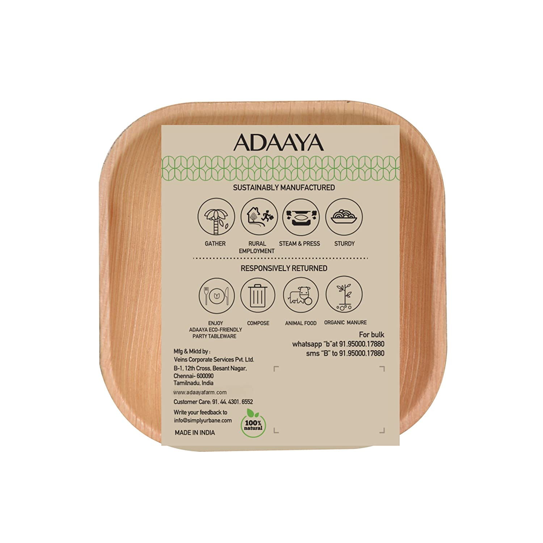 Disposable Dessert Areca Palm Plate 4