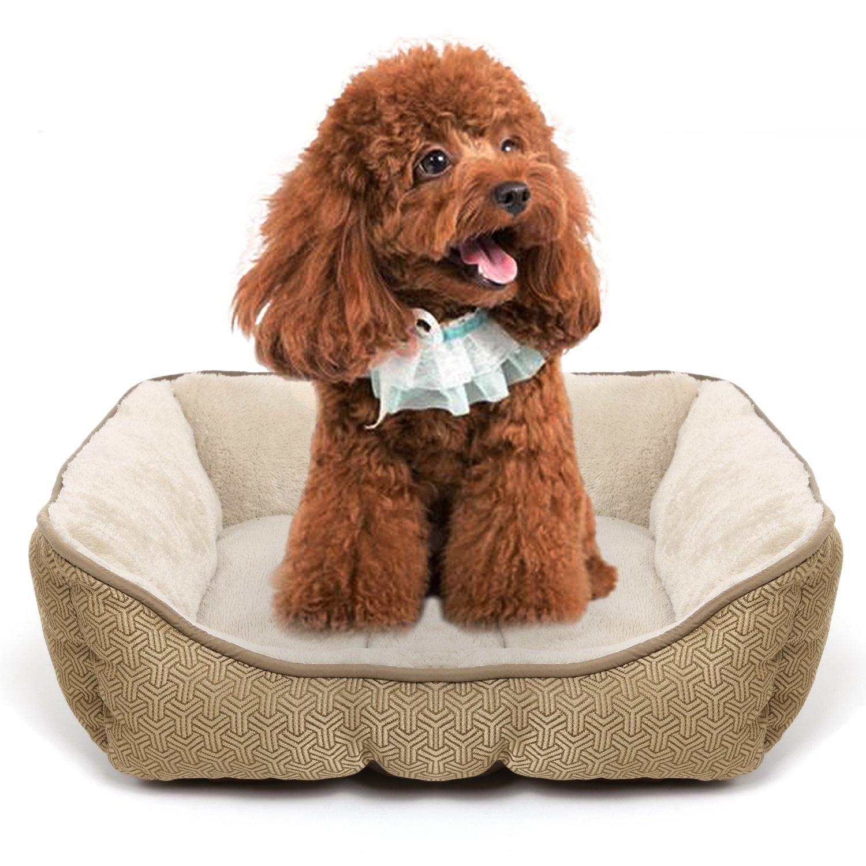 Fastdirect - Lecho para perros y gatos pequeños, medianos y grandes, cama para animales domésticos, de algodón, polipropileno y terciopelo ultra suave, ...