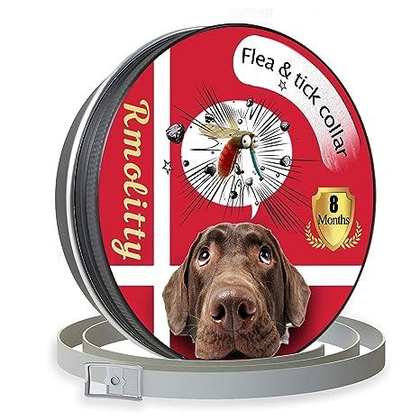 bda622839171 Rmolitty Collar Antiparasitario para Perro