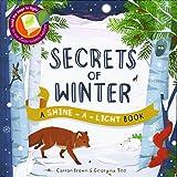 Secrets of Winter Secrets (A Shine-A-Light Book )