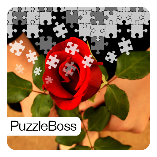 Valentines Roses Jigsaw Puzzles for sale  Delivered anywhere in USA