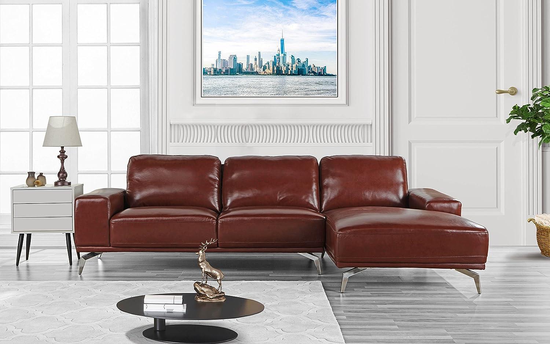 Amazon.com: Modern Real Leather Sectional Sofa, L-Shape ...