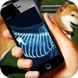 X-ray Dog Simulator