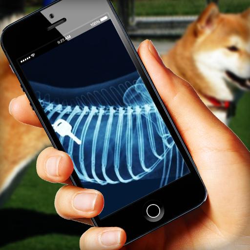 X-ray Dog Simulator - Xray Gift App