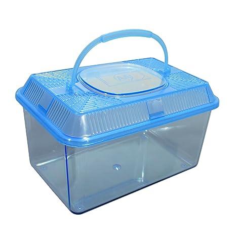 Caja de plástico, Acuario/Platillos Z. Cultivo y Cuarentena, insectos Caja,