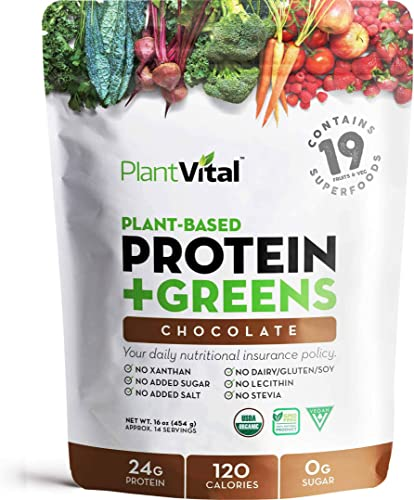 New Plant Based Chocolate Protein Powder w 19 Superfood