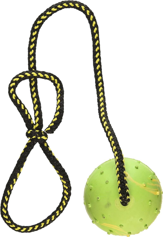 Bola de Perro, K9 Bola, Bola de Goma Maciza en Cuerda para ...