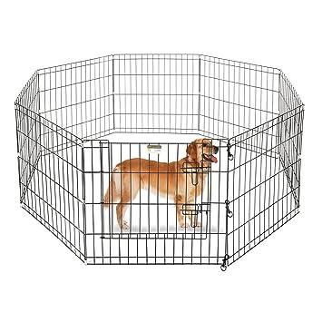 Amazon.com : Pet Trex 24