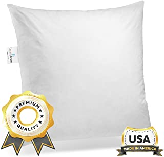 product image for ComfyDown 95% Feather 5% Down, 32 X 32 Square Decorative Pillow Insert, Sham Stuffer - Made in USA