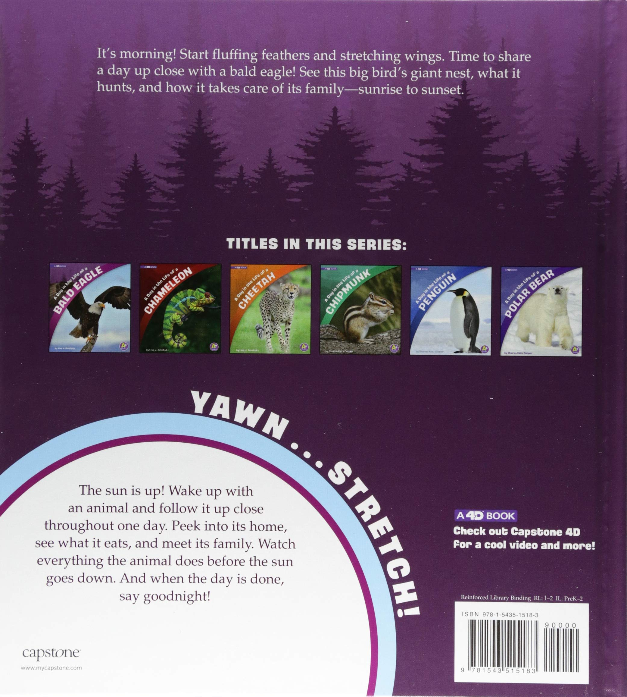 A Day In The Life Of Bald Eagle 4d Book Lisa J Amstutz Cycle Also Diagram Addition 9781543515183 Books