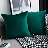 WLNUI Set of 2 Soft Velvet Christmas Forest Green Pillow Covers 18x18 Inch Square Decorative Throw Pillow Covers Cushion Case