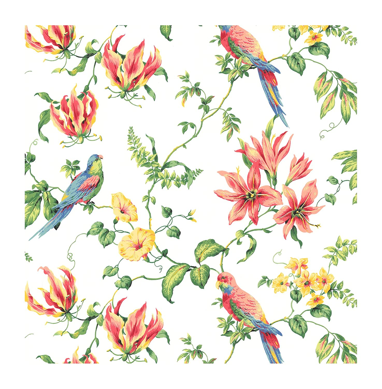 York Wallcoverings Cj2801smp By The Sea Tropical Bird Wallpaper