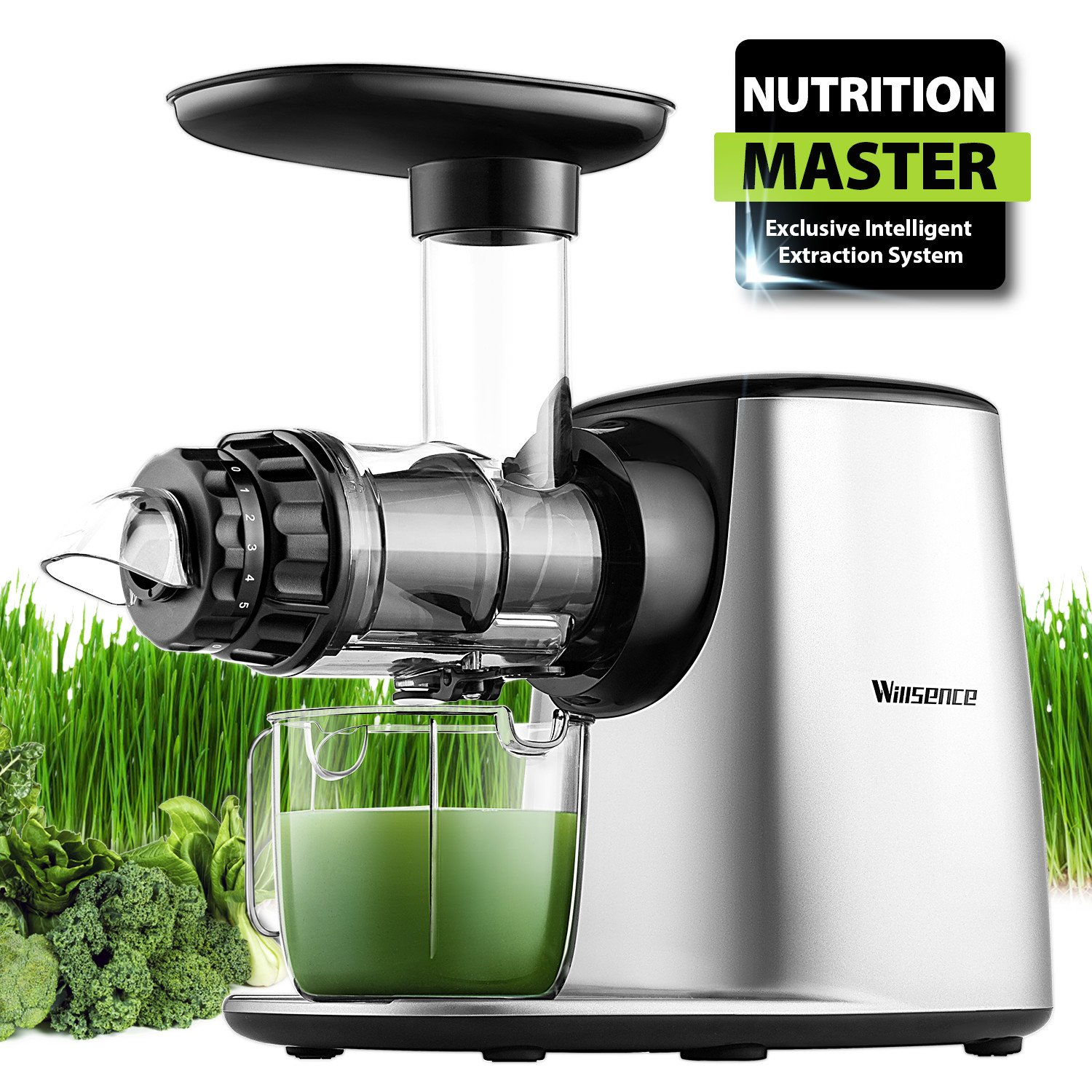Willsence Juicers, Slow Masticating Juicer Extractor, Nutrition Master Cold Press Juicer Machine with Reverse Function,Fruits Vegetable Pulpfresh BPA Free (black)