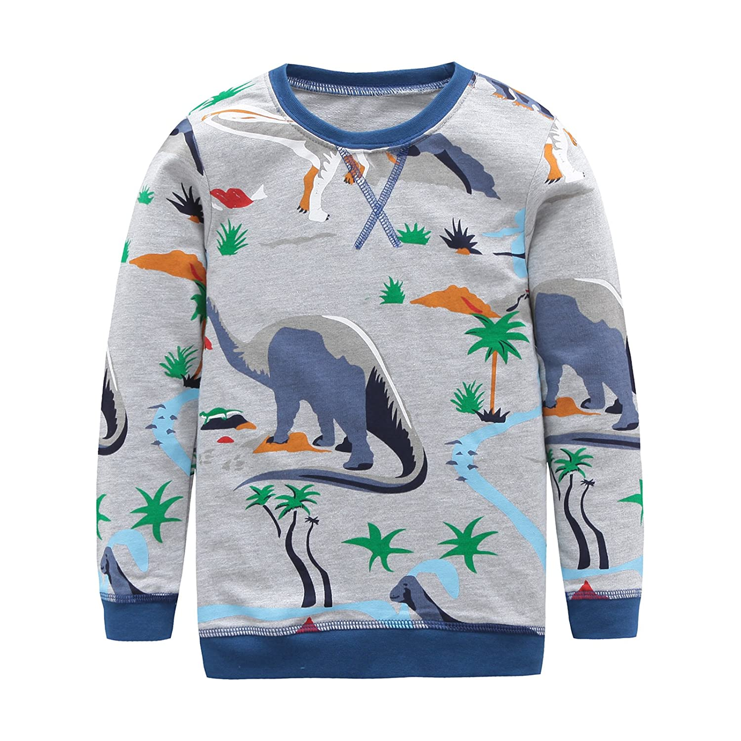 HowJoJo Boys Cotton Long Sleeve T-Shirts T Rex Dinosaur Shirt Graphic Tees