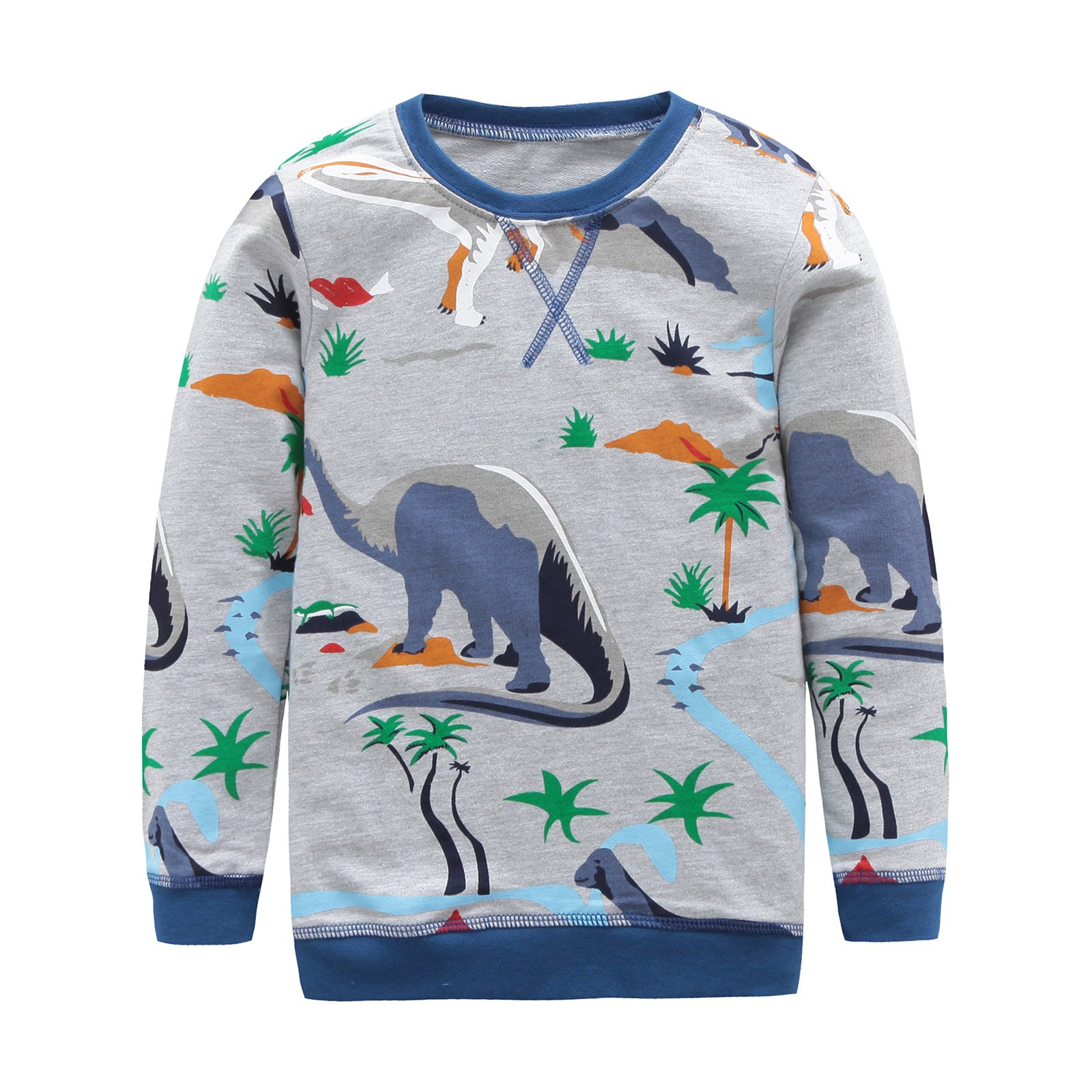 HowJoJo Big Boys Dinosaur Shirts Cotton Long Sleeve T-Shirts Graphic Tees Grey 7T
