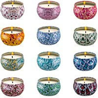 Onebird Set of 12 Scented Candle Gift Set, Natural Pure Soy Wax Aromatherapy Candles Essential Oils for Home and Women