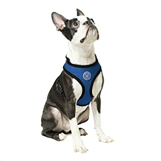 Gooby - Soft Mesh Harness, Small Dog Harness with Breathable Mesh, Blue, Large