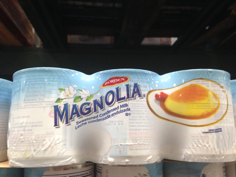 Amazon.com : Magnolia sweetened condensed milk 5/14 oz. (pack of 2) : Grocery & Gourmet Food