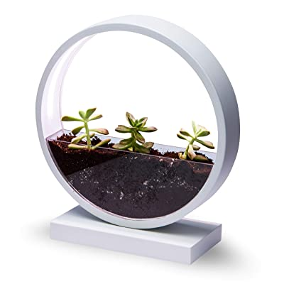 Make Lemonade Indoor LED Planter with Easy-Grow Accessories Kit, Brightness Settings, Ideal for Home and Office, Succulents, Flowers and Herbs : Garden & Outdoor
