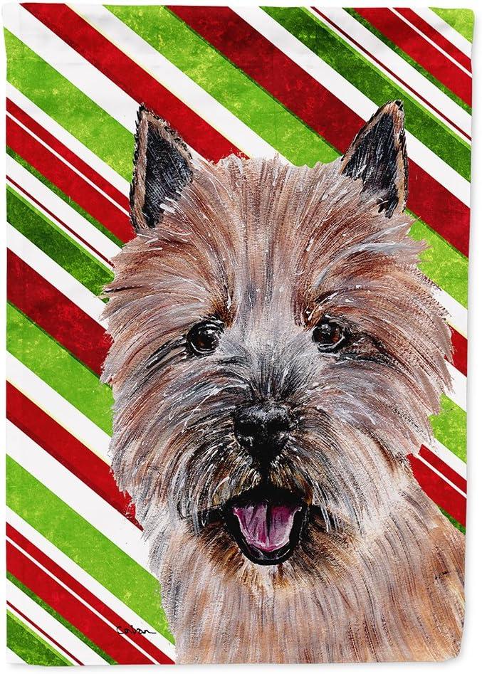 Caroline S Treasures Sc9806gf Norwich Terrier Candy Cane Christmas Flag Garden Size Small Multicolor Garden Outdoor