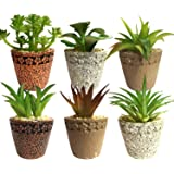 Conjunto Com 6 Cachepot Vaso Cerâmica Suculenta Artificial Imã Geladeira
