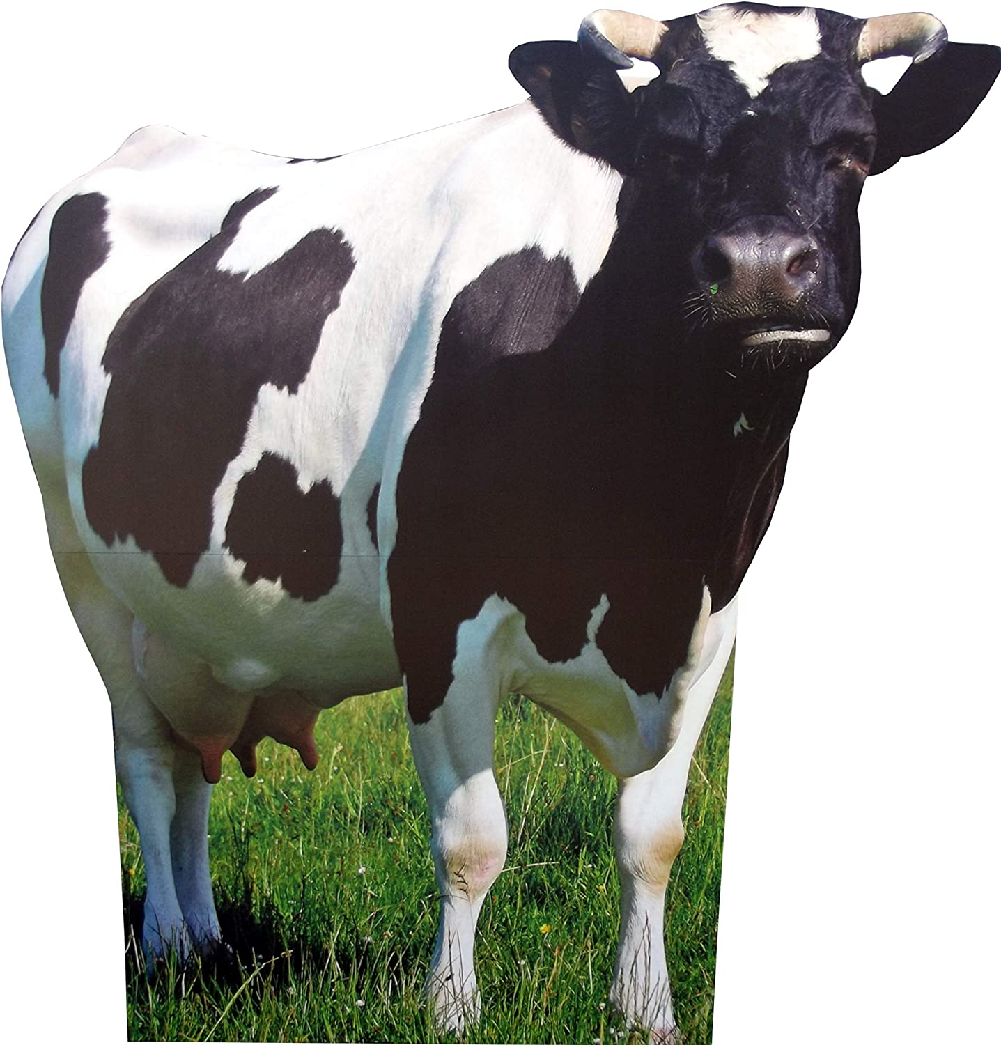 aahs!! Engraving Animal Life Size Cardboard Cutout Stand Up | Standee Picture Poster Photo Print (Cow)