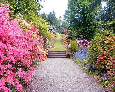 Aofoto 10x8ft Beautiful Spring Flowers Photography Studio Backdrop Garden Landscape Background Wedding Lovers Girl Kid Woman Adult Lady Portrait Photo