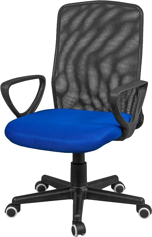 duehome Silla de Oficina, Silla para Escritorio o Estudio, Medidas: 58x88,5x55cm, Coco (Azul): Amazon.es: Hogar