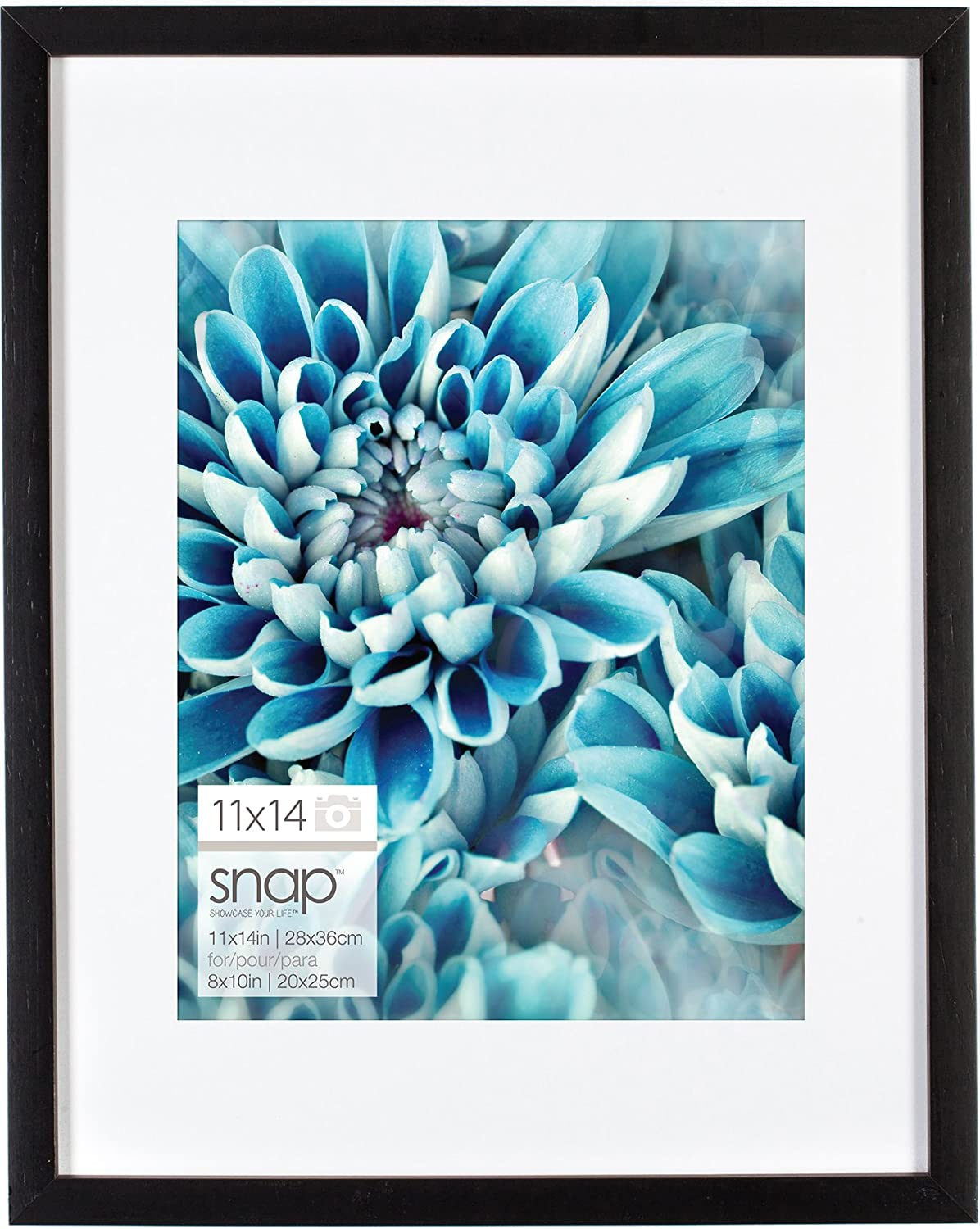 Amazon.com: Snap 11x14 Black Wood Frame with 8x10 White Mat Opening ...