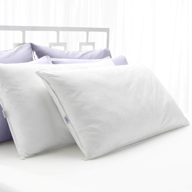 Set of 2 Dreamaway Gel-Fiber Pillows King Size