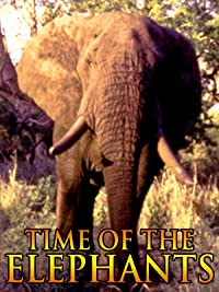 Time of the Elephants