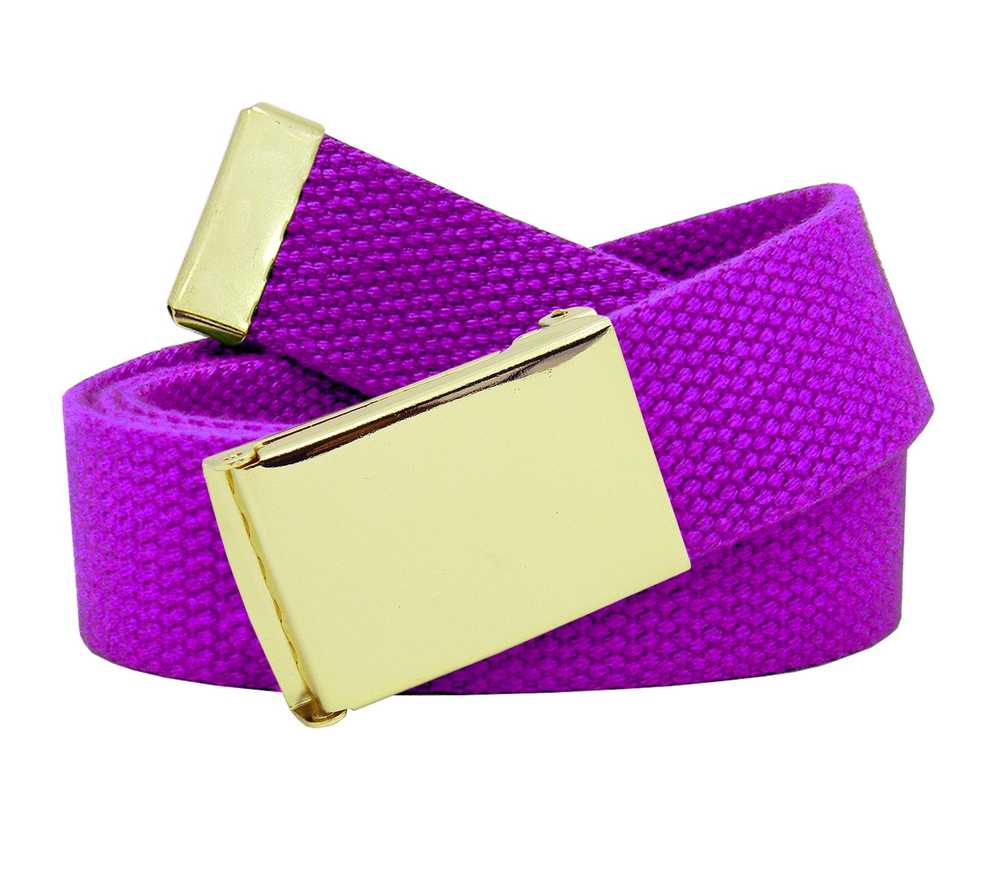 Women's Gold Brass Flip Top Belt Buckle with Canvas Web Belt X-Large Purple